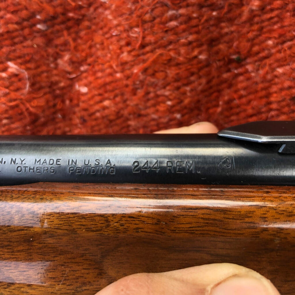 A glossy, wood-stocked Remington with a metal barrel stamped with 244 REM and