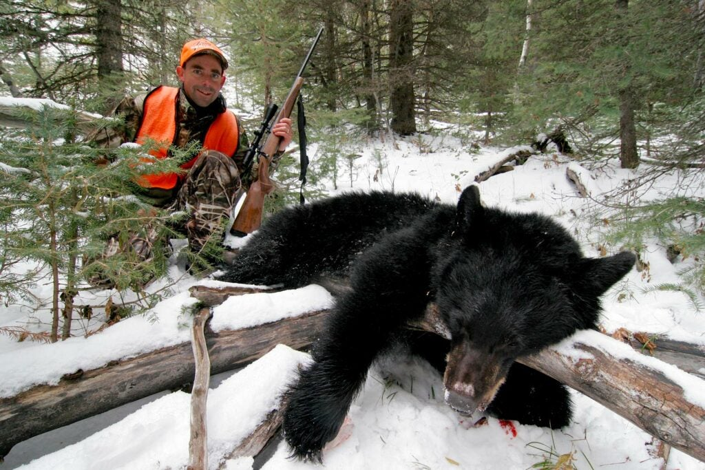 A hunter in an orange vest kneels behind a black bear in the snow.