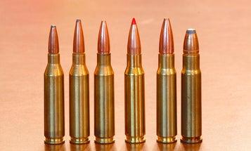 .338 Federal: The Best Deer Cartridge You've Never Tried