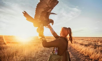 What it's Like to Hunt with Eagles in Mongolia