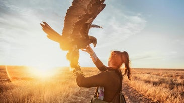 A woman stands in an open field with a golden eagle perched on her arm.