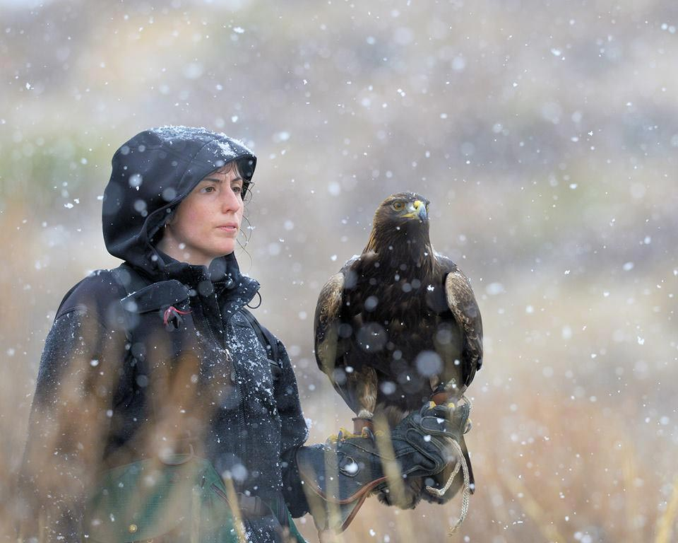 A woman poses with a golden eagle during snowing weather.