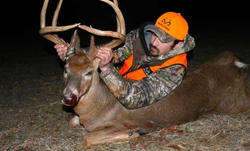 10 Natural Ground Blinds That Keep You Hidden from Deer