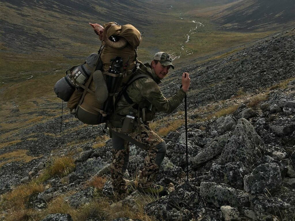 A packed-out hunter walking on a hillside.