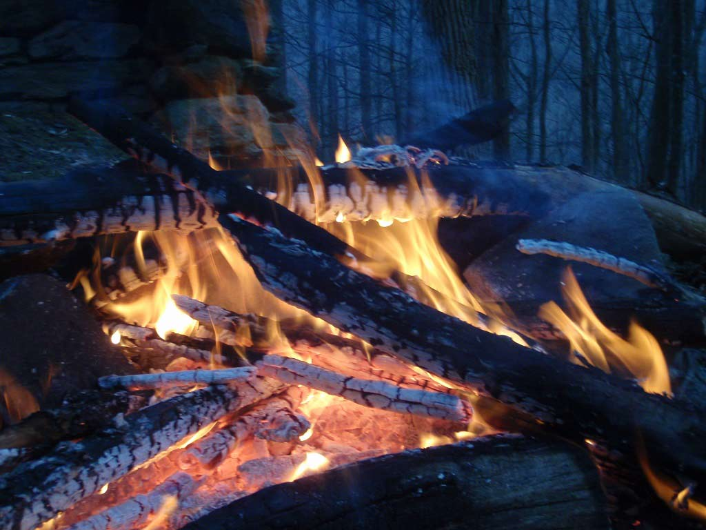 A small fire burning at night in the woods.