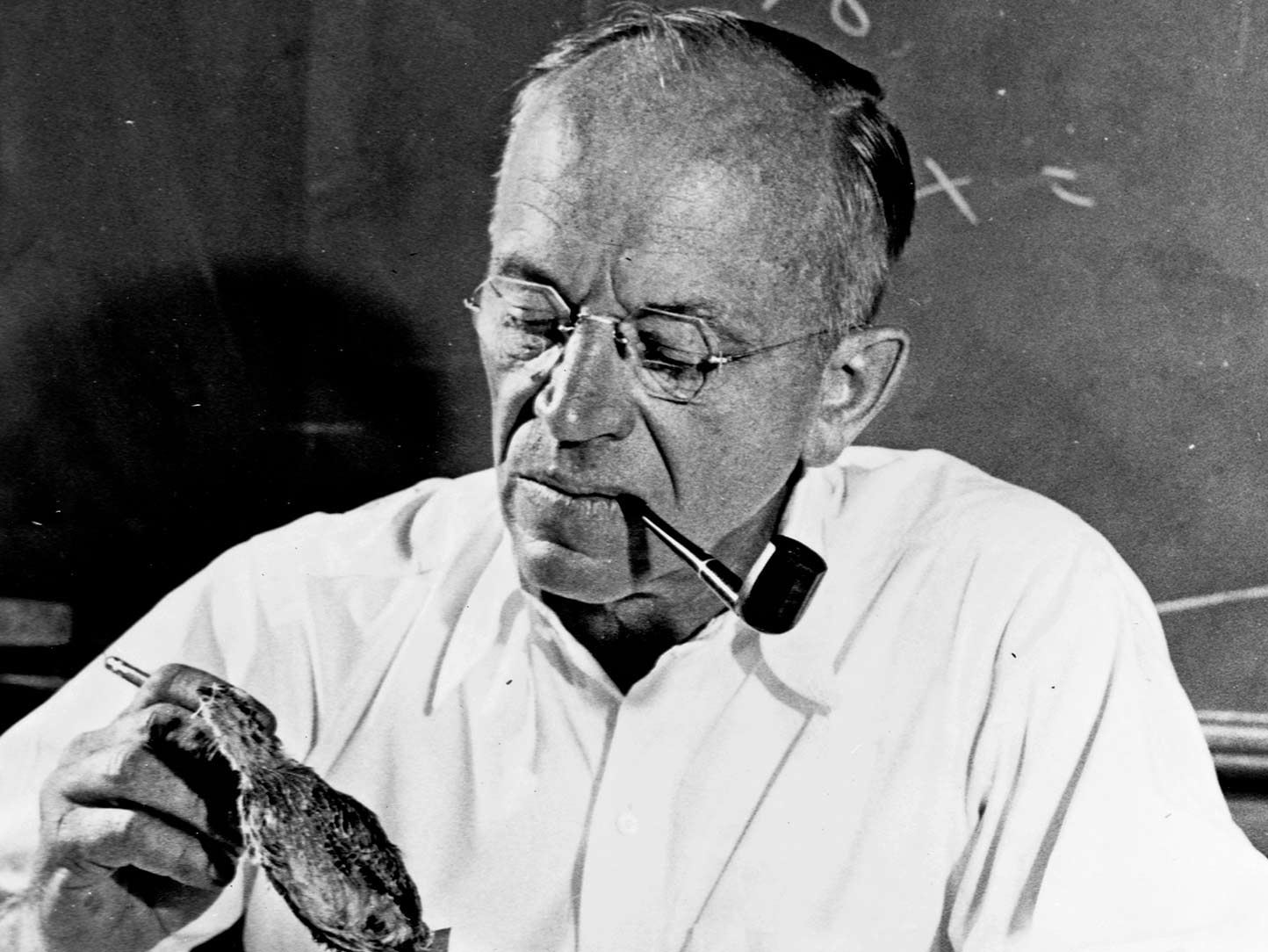 A black and white photo of a man holding specimens.