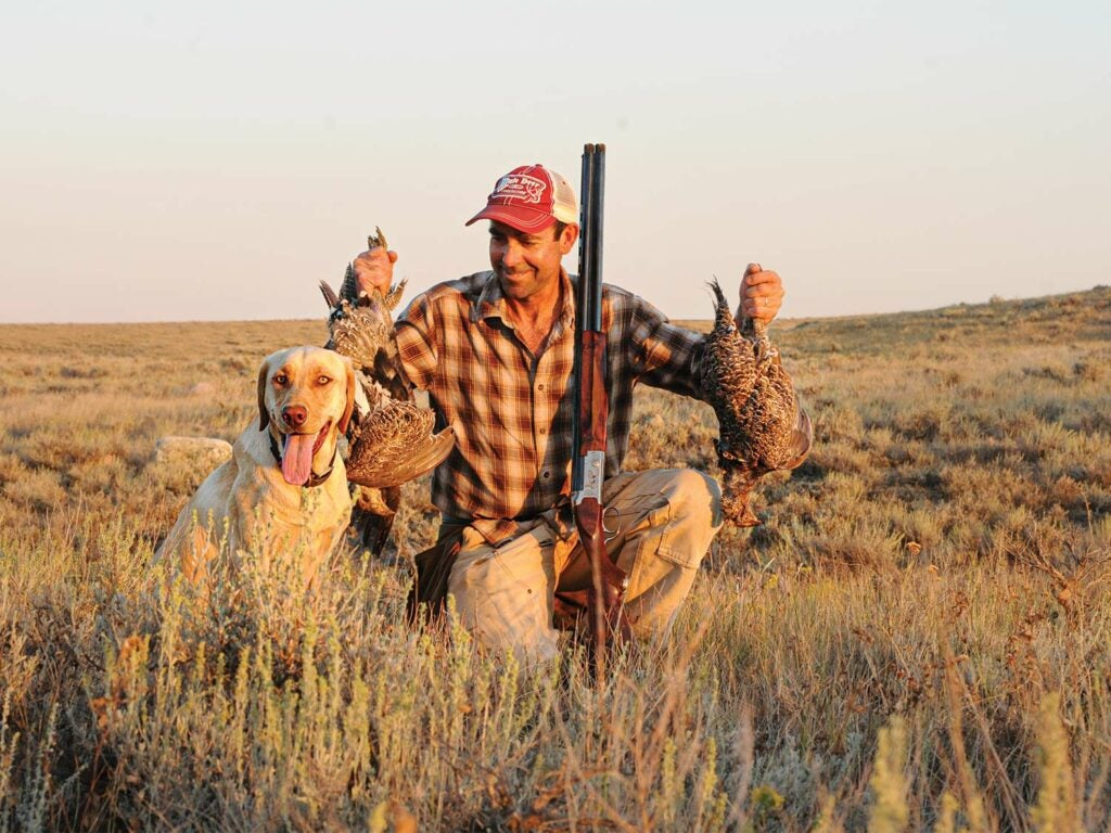 A hunter holds up ruffed grouse next to a hunting dog.
