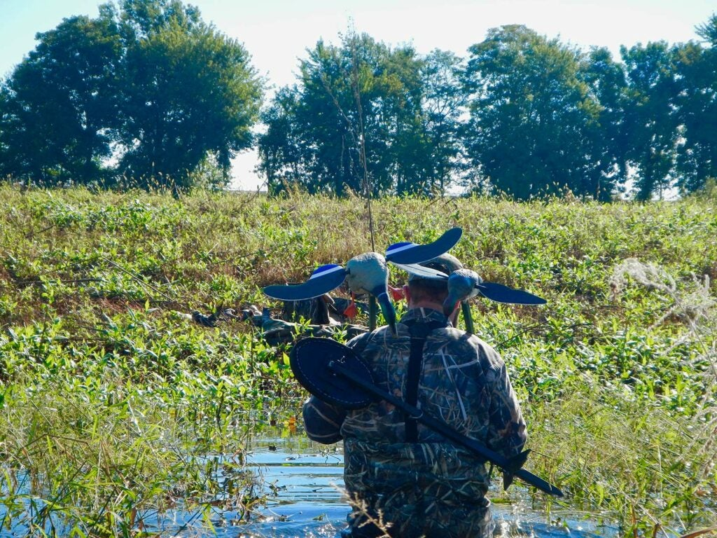 A hunter wading through water to place duck decoys.