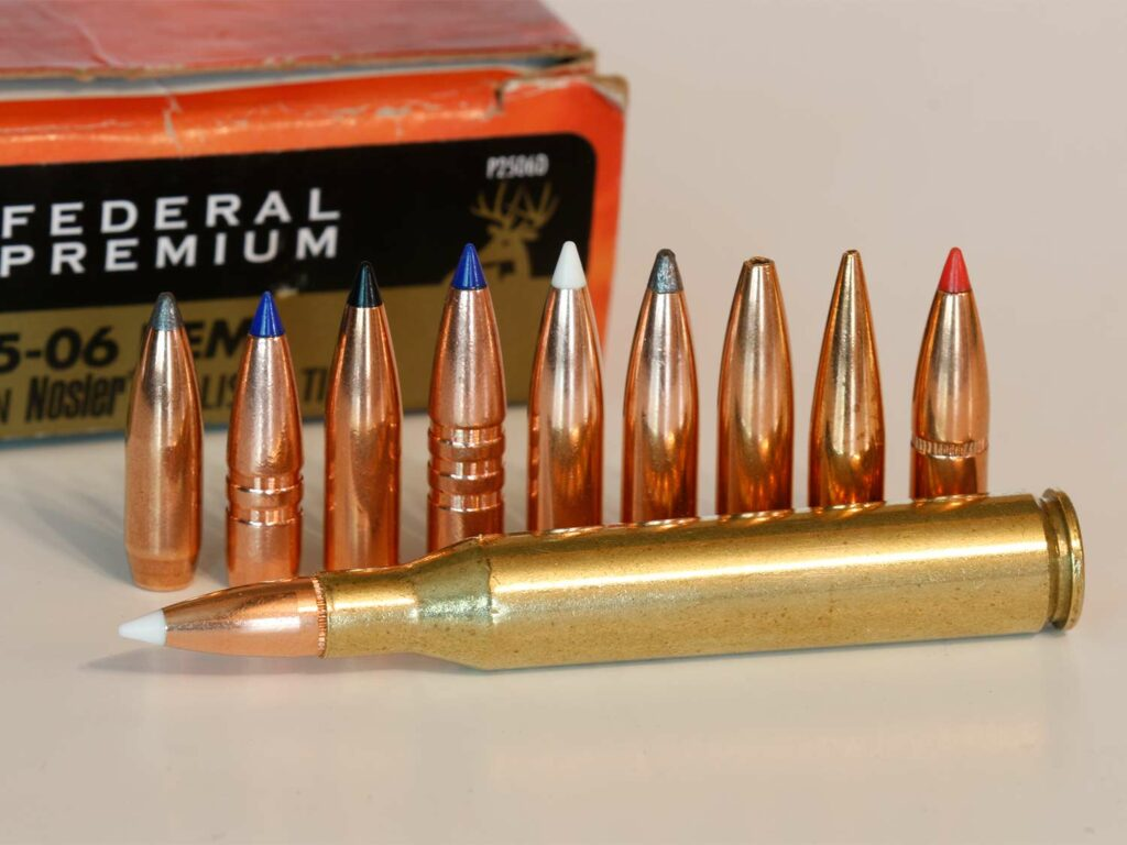 A lineup of rifle bullets next to a cartridge.
