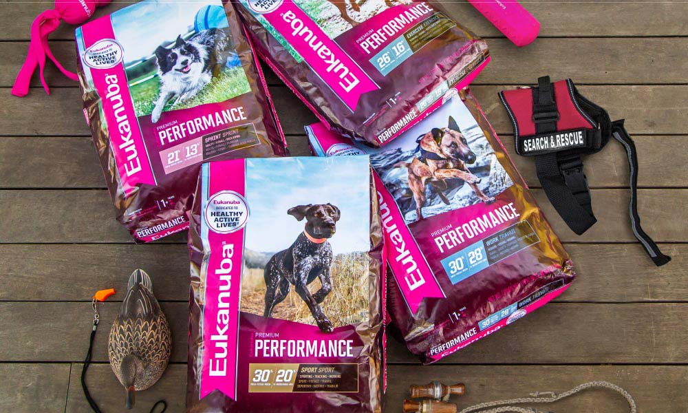 Four bags of Eukanuba dog food on a wooden floor.