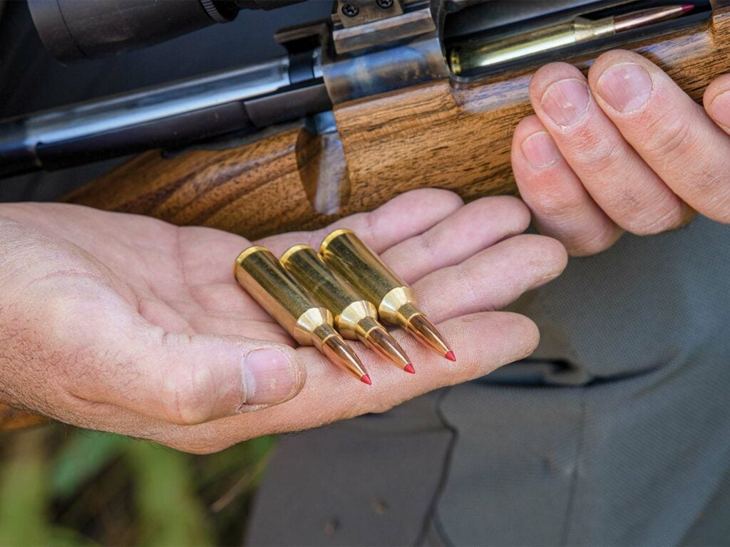 Close up of three bullets being held in the hand of a hunter also holding a rifle.