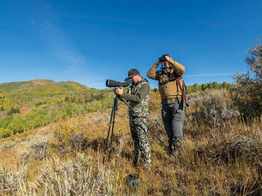 Two hunters stand on a hillside and scout the terrain using spotting scopes and binoculars.