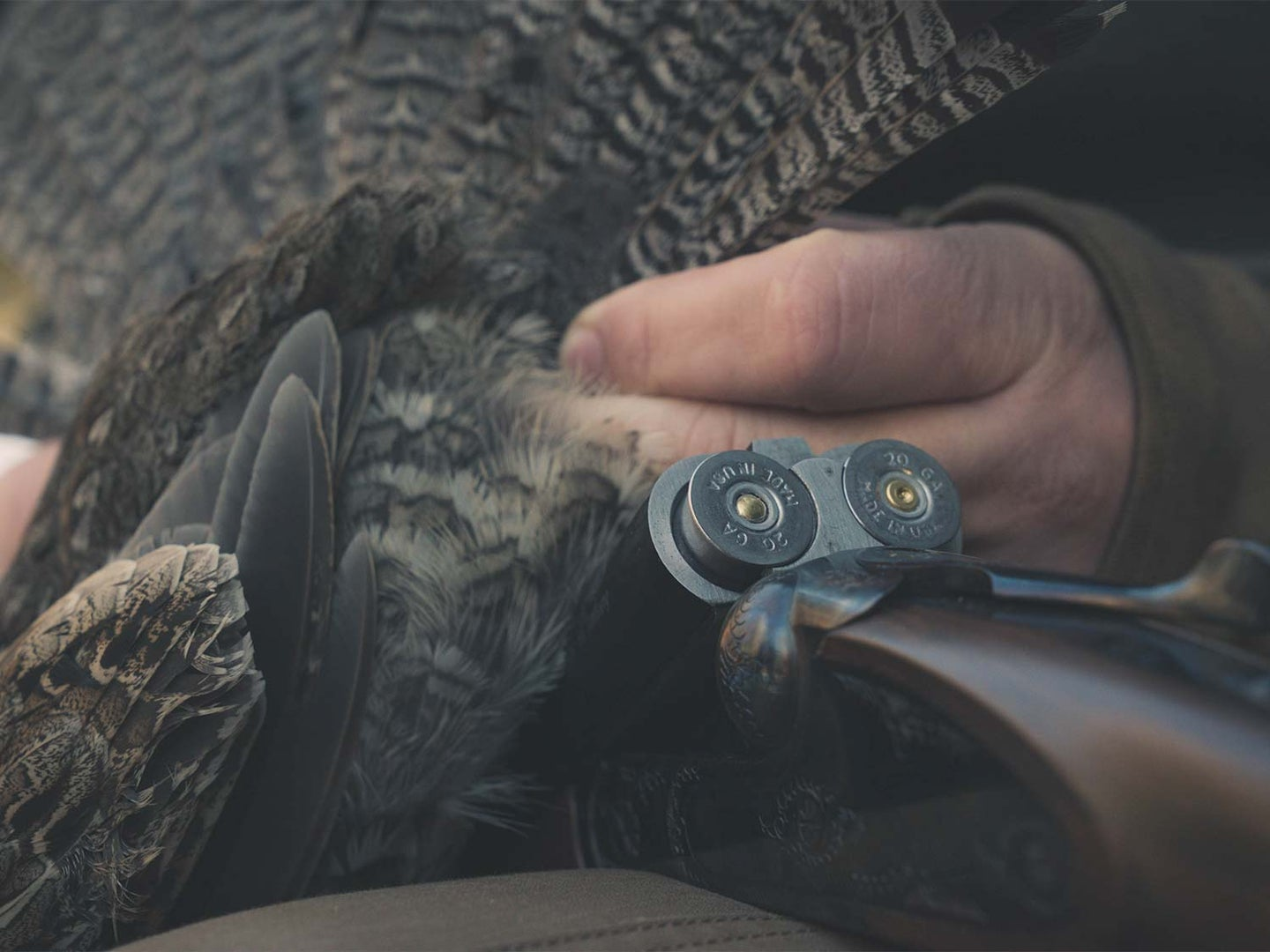 A hunter checks shotshells in a side-by-side shotgun next to a grouse.