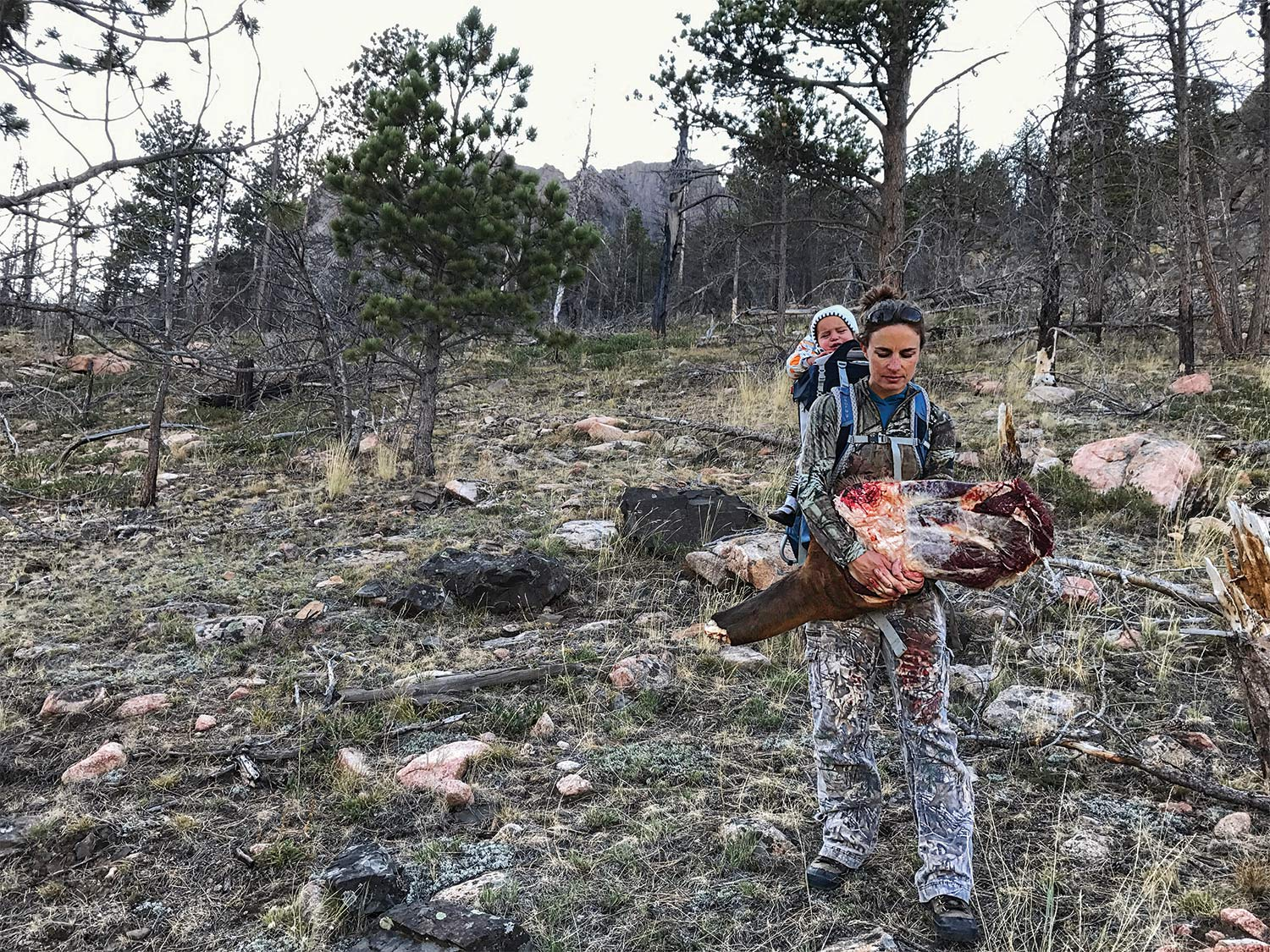 The author helps pack out her husband's elk while carrying her daughter on her back.