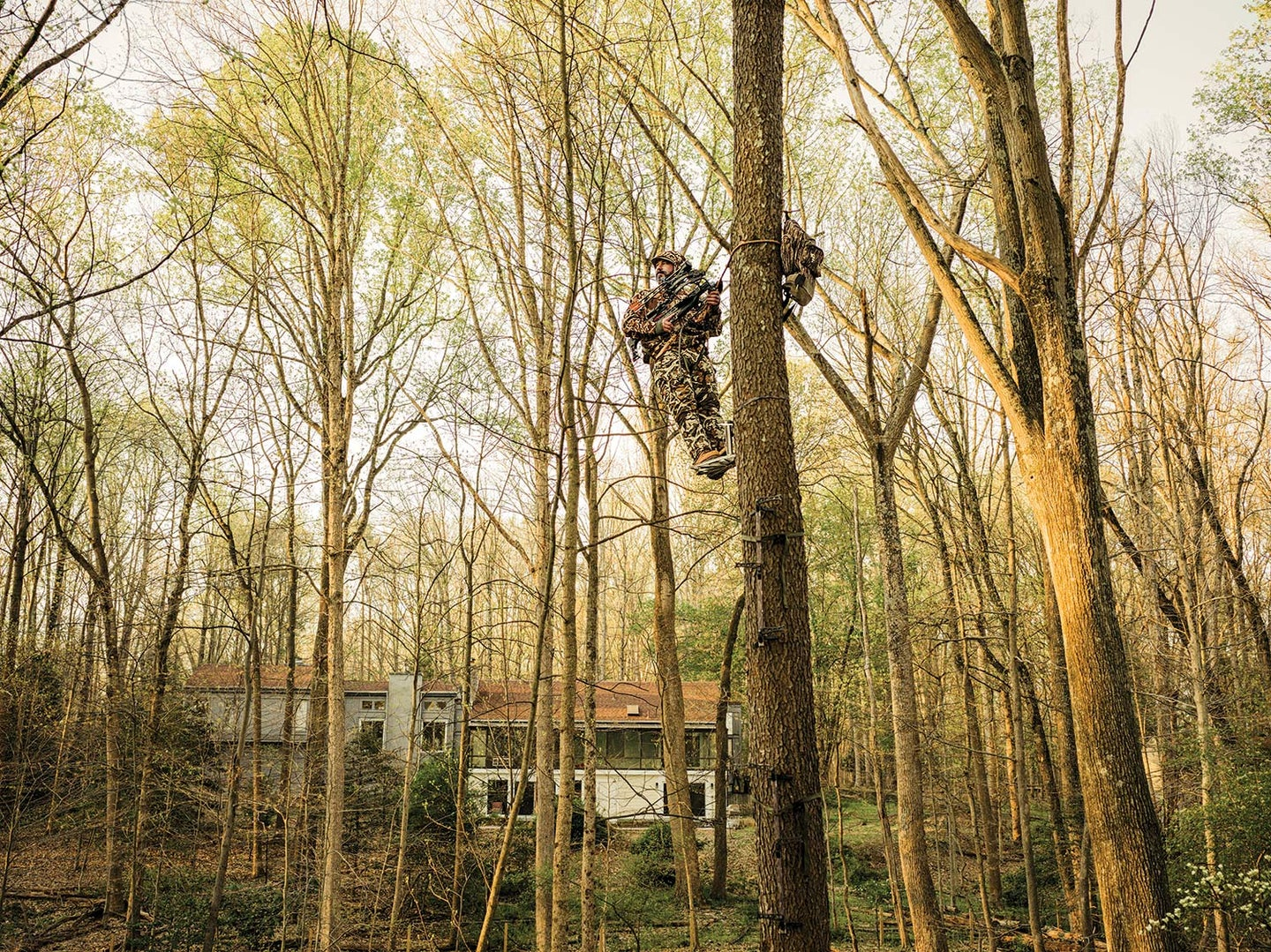 A hunter climbs up in a tree stand in his back yard.
