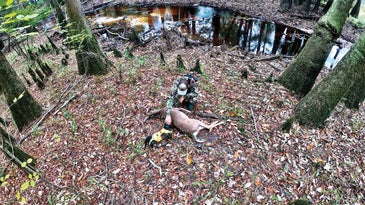A hunter kneels over a doe in the woods while petting his blood trail hunting dog for a job well done.