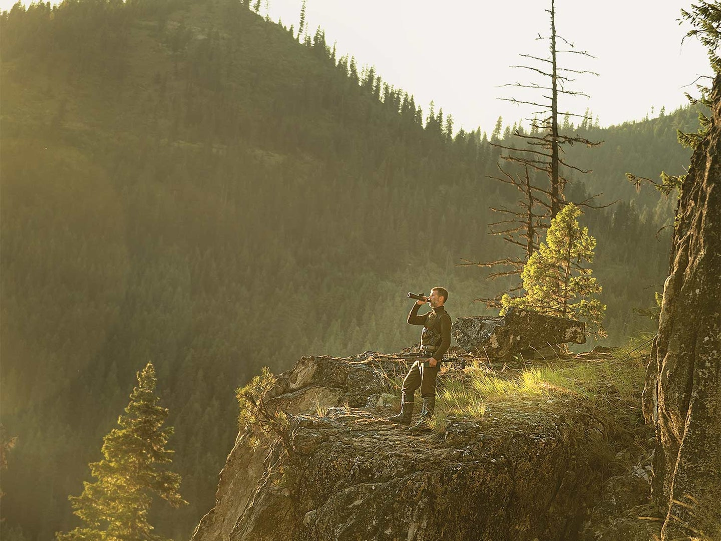 A hunter stands on a hillside scouting and calling for wolves. A forested mountain hillside is in the background.