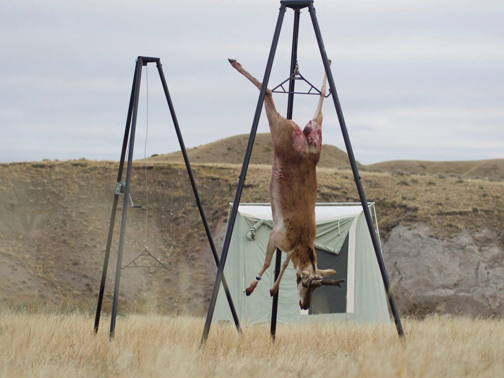 A pronghorn antelope hangs from a skinning station in a large open plain.