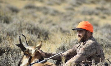 The Newbie's Guide to Hunting Pronghorn