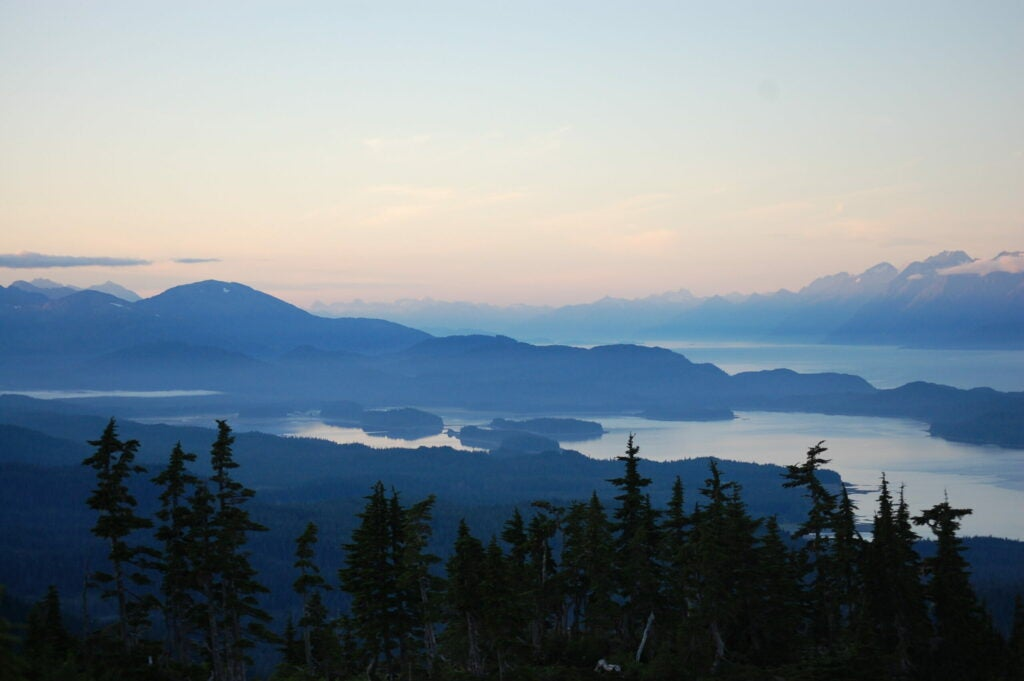 A scene of coniferous trees in the foreground, and hazy blue mountains and coastal ocean in the background.