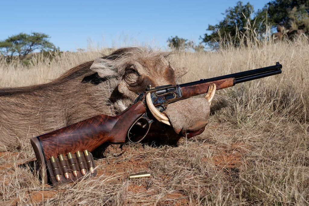 A marlin 1895 hunting rifle leaning against a boar.