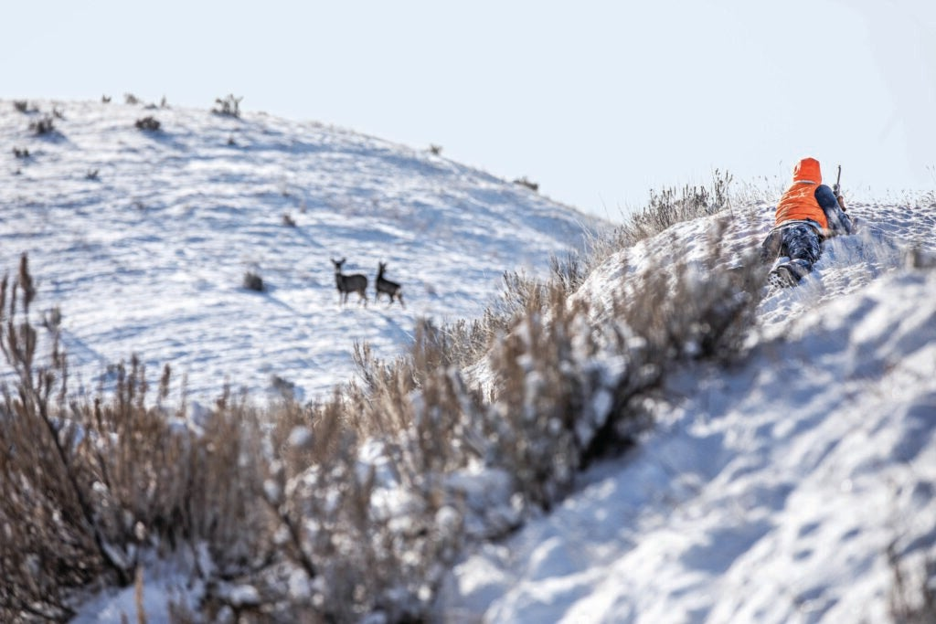 A hunter in blaze orange on a hill, over looking a snowy hill.