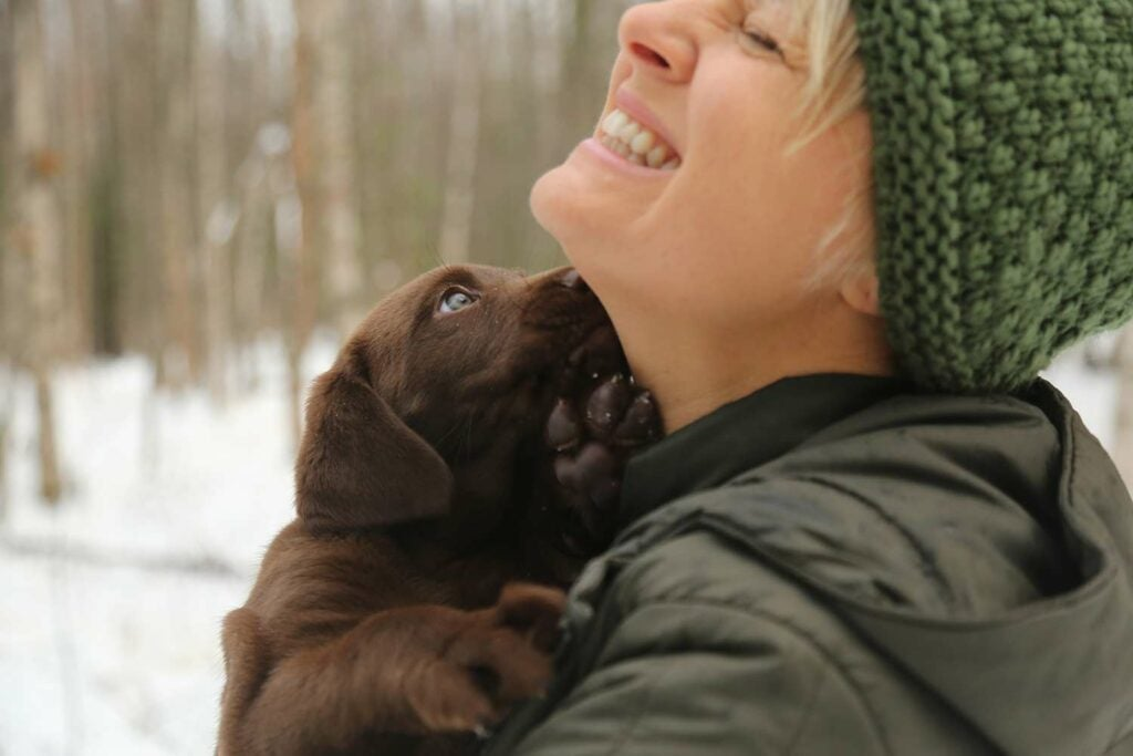 A woman hunter holds a chocolate lab puppy while standing in the snow.