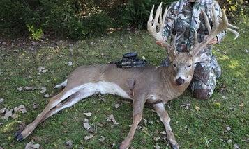 The Biggest Buck of the Season?