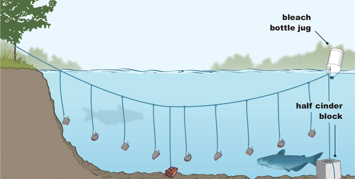 Illustrations of trot line rigs.