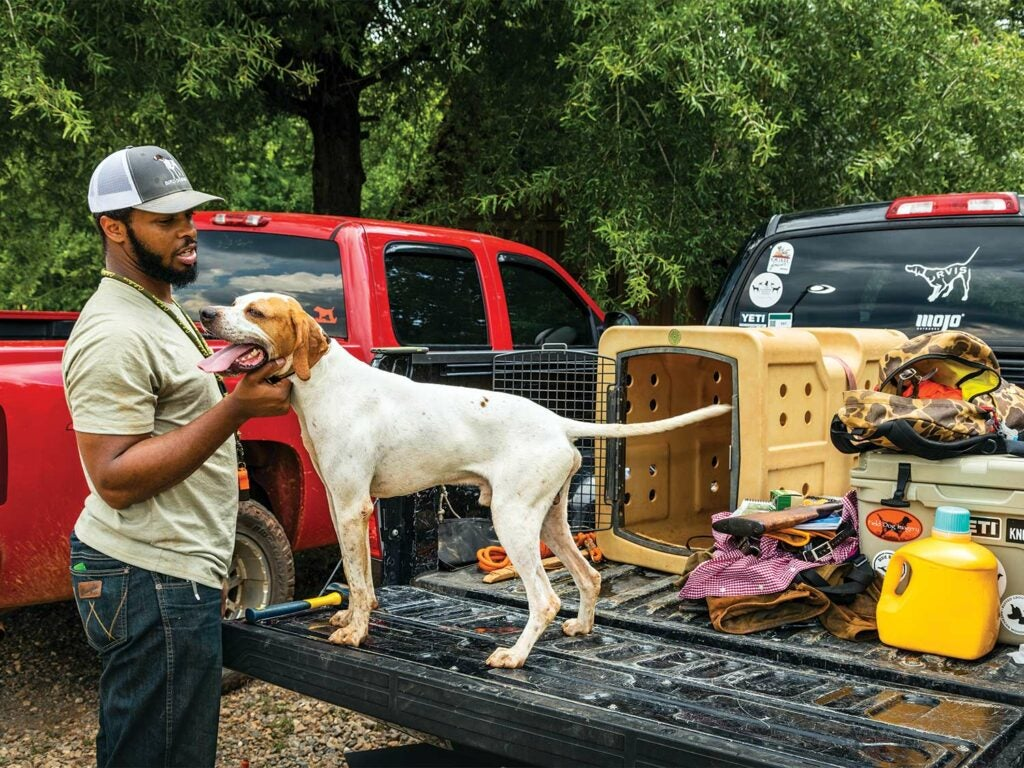 A hunter pets his hunting dog that is standing on the tailgate of his truck.
