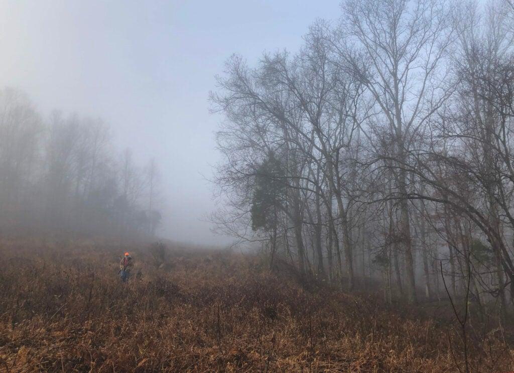 A man in a blaze orange hat walks through a misty fall field.