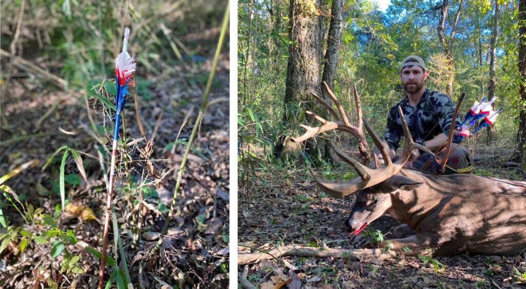 A blue and white and red traditional arrow beside a hunter and his giant whitetail buck.