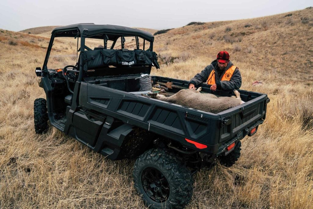 Loading a muley doe into the Can-Am Defender.