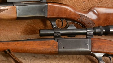 Close up details of variant models of the Savage Model 99 lever action rifle.