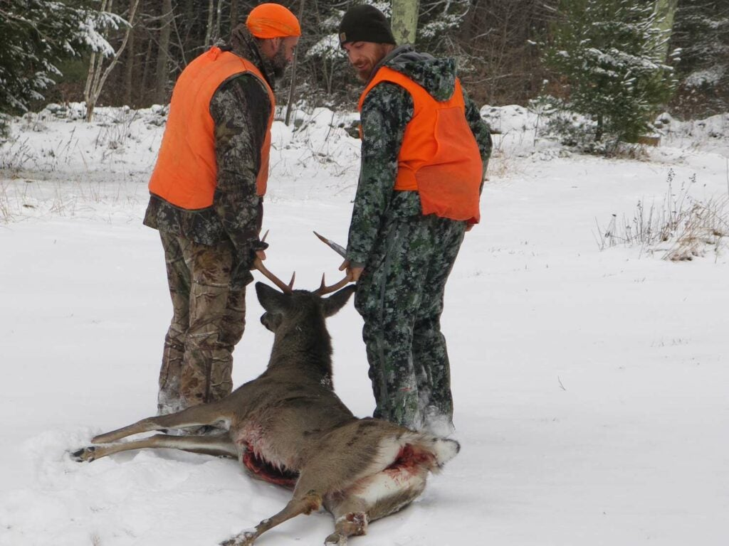 Two hunters drag a dropped deer through the snow