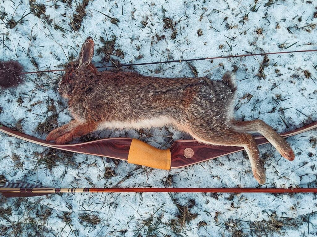 A small rabbit on the snowy ground next to a bow and arrow.