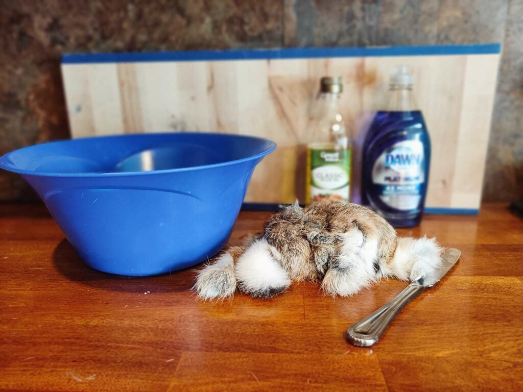 Supplies needed for rabbit hide tanning.