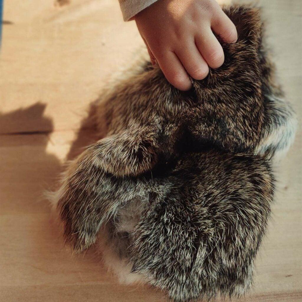 A bundle of rabbit hides.