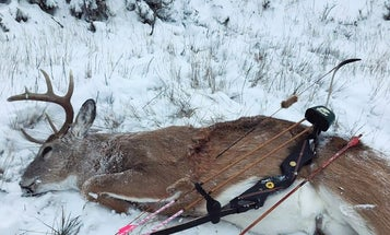 This Recurve Bow Is Hunting Its Way Across the Country, and Keeping the Spirit of Fred Bear Alive