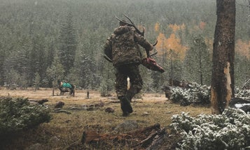Married to the Game: Becoming a Great Hunter Means Living in the Moment