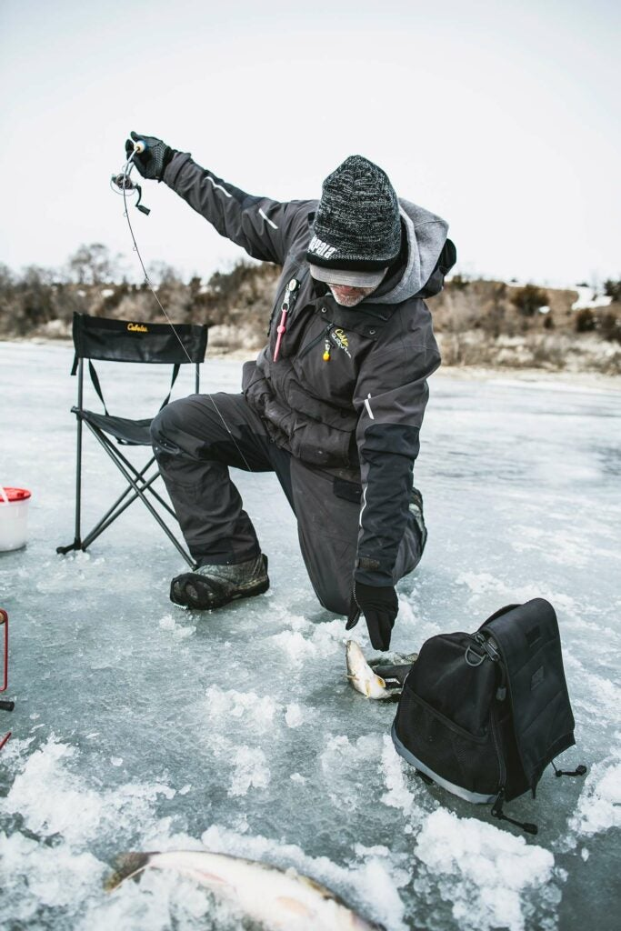 An angler pulls a walleye from an ice fishing hole.