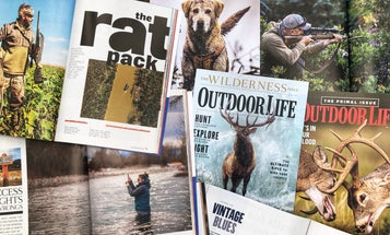 The 10 Best Stories of 2020, as Chosen by Our Loud-Mouthed Hunting Buddy