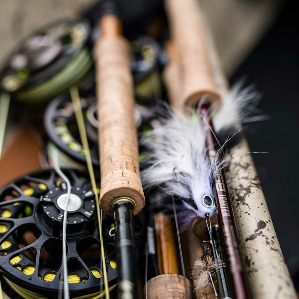 A collection of fly fishing rods and reels.