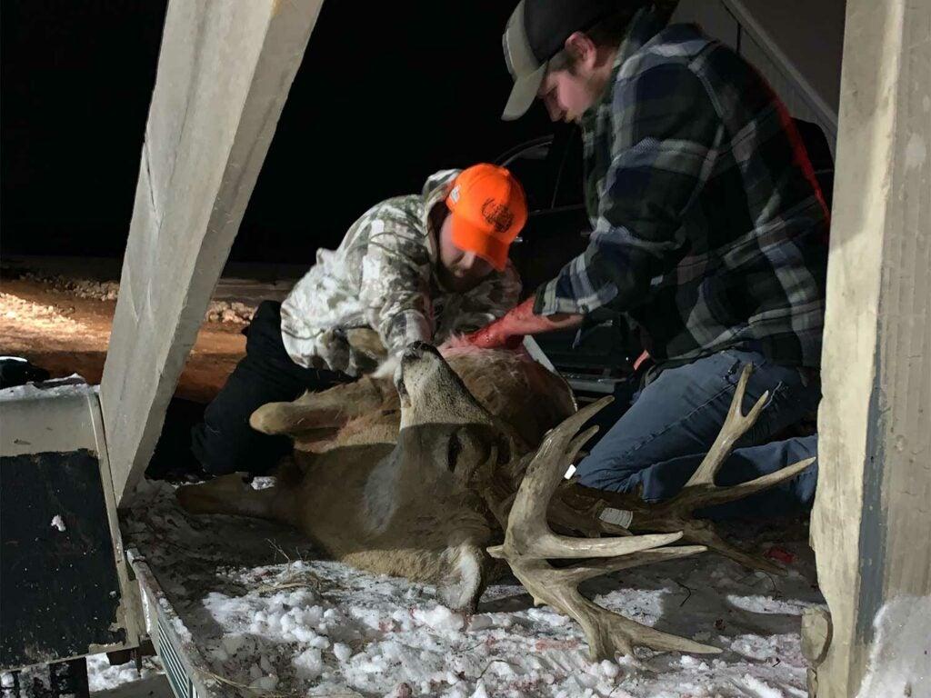 Two hunters butcher an iowa buck.