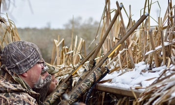 Are Today's New Hunting Shotguns Really Worth the Price? Here Are 4 Used (and Cheaper) Models to Consider