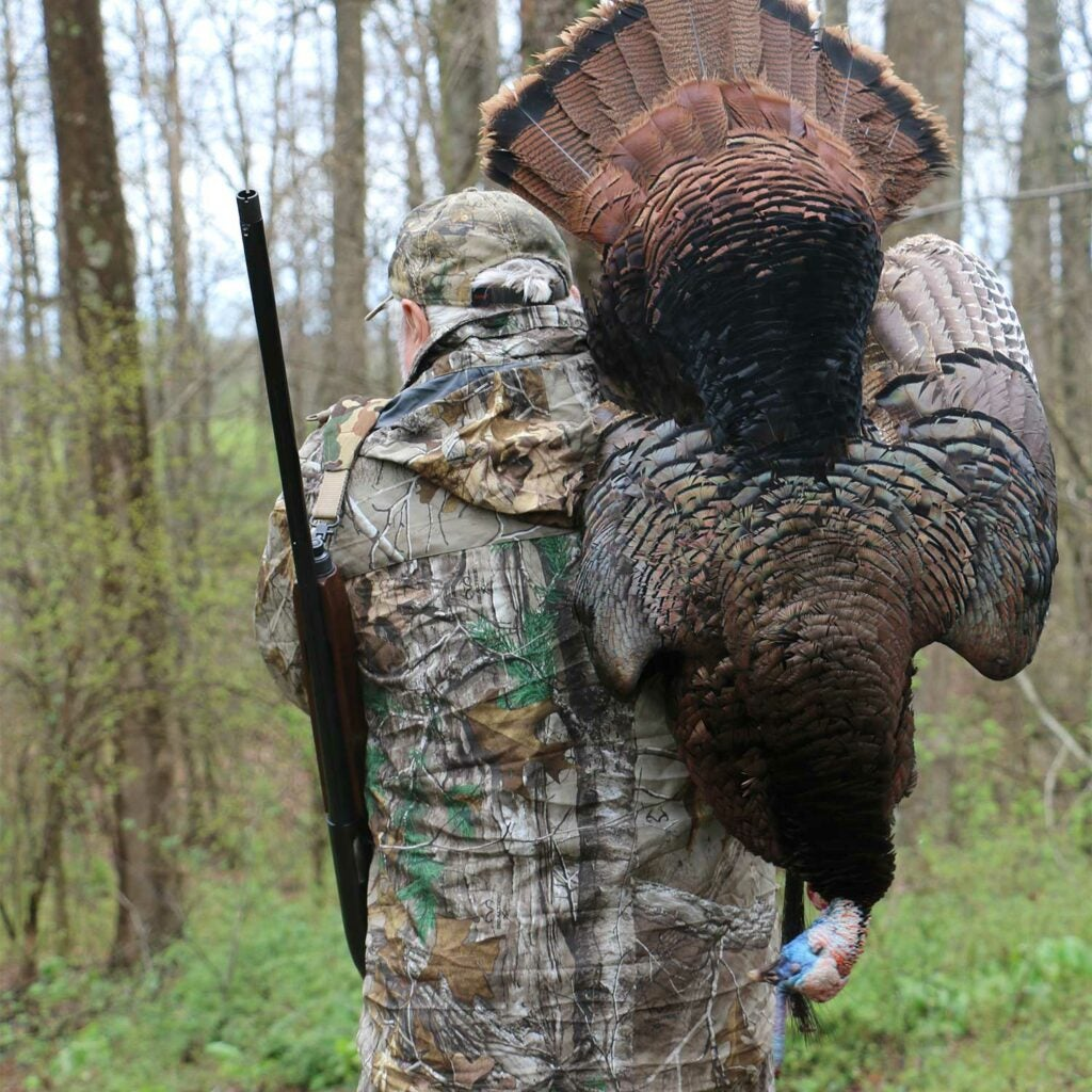 A hunter walks with a turkey over his shoulder.