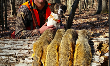 Right Now is The Best Time to Be a Public-Land Small-Game Hunter