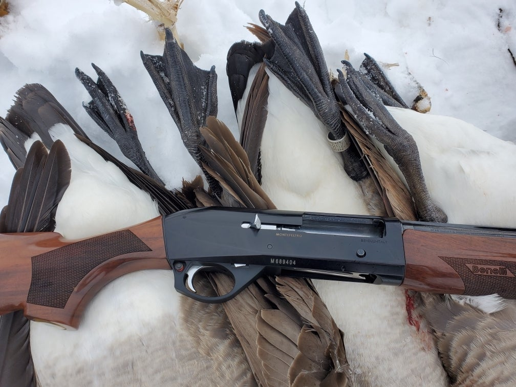 A black and wooden semi-auto Benelli shotgun resting on a pair of Canada geese.