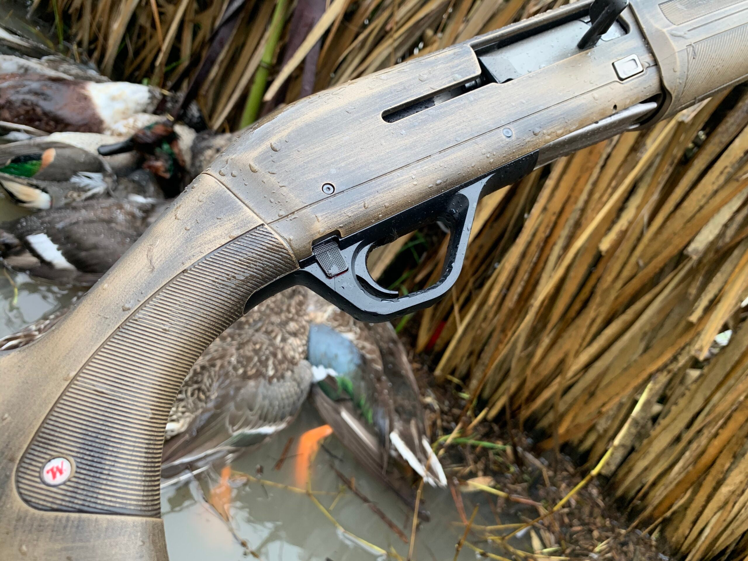 Putting the SX4 to the test on Texas ducks.