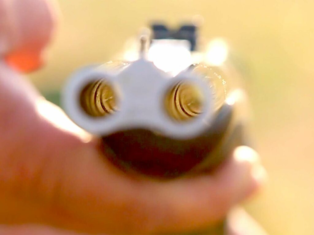 The double rifle bore muzzles.